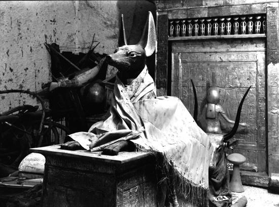Anubi coperto da un mantello di lino all'ingresso della stanza del tesoro - foto Harry Burton