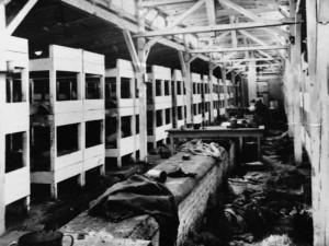 I dormitori di Auschwitz II-Birkenau. Al centro è ben evidente il condotto del 'riscaldamento'. (MONDADORI PORTFOLIO, http://www.focus.it/cultura/storia/le-prime-foto-storiche-del-campo-di-concentramento-di-auschwitz?gimg=56363&gpath=#img56363)