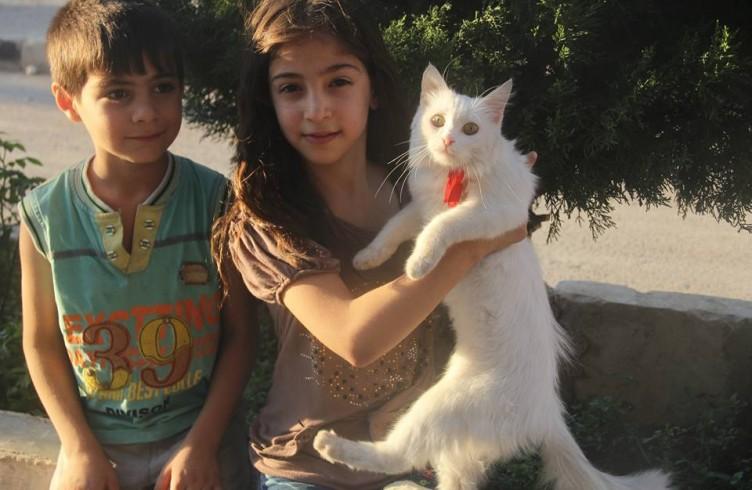 Bimbi di Aleppo e un ospite del Gattile di Ernesto (foto di Mohammed Darweesh)
